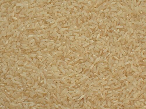 rýže - bílá