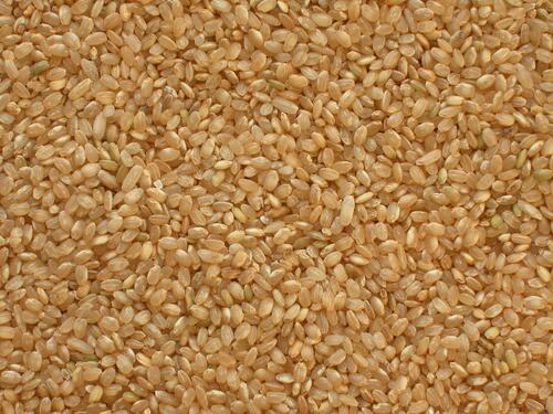 rýže-natural