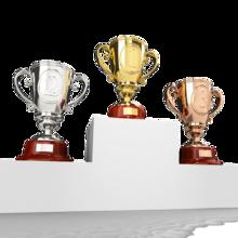 DLG award for lont-term quality (3rd year), Czech Superbrand Award RACIO